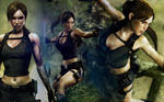 Tomb Raider 8 Wallpaper