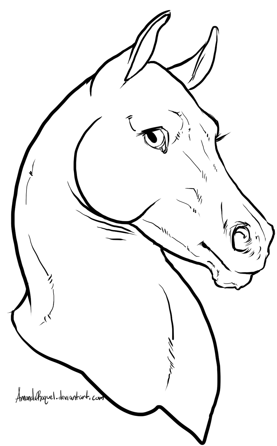 horse face coloring pages - photo#25