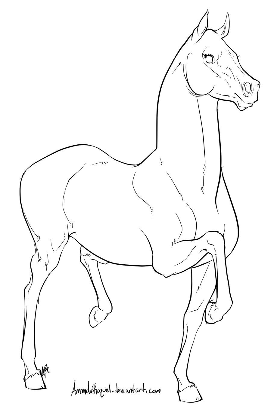 D Line Drawings : Racking horse lineart by amandaraquel on deviantart