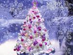 A Christmas Winter