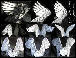 Fursuit Wings Mock-up by swandog