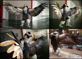 Lett Debuted at NFC (Part 1) by swandog