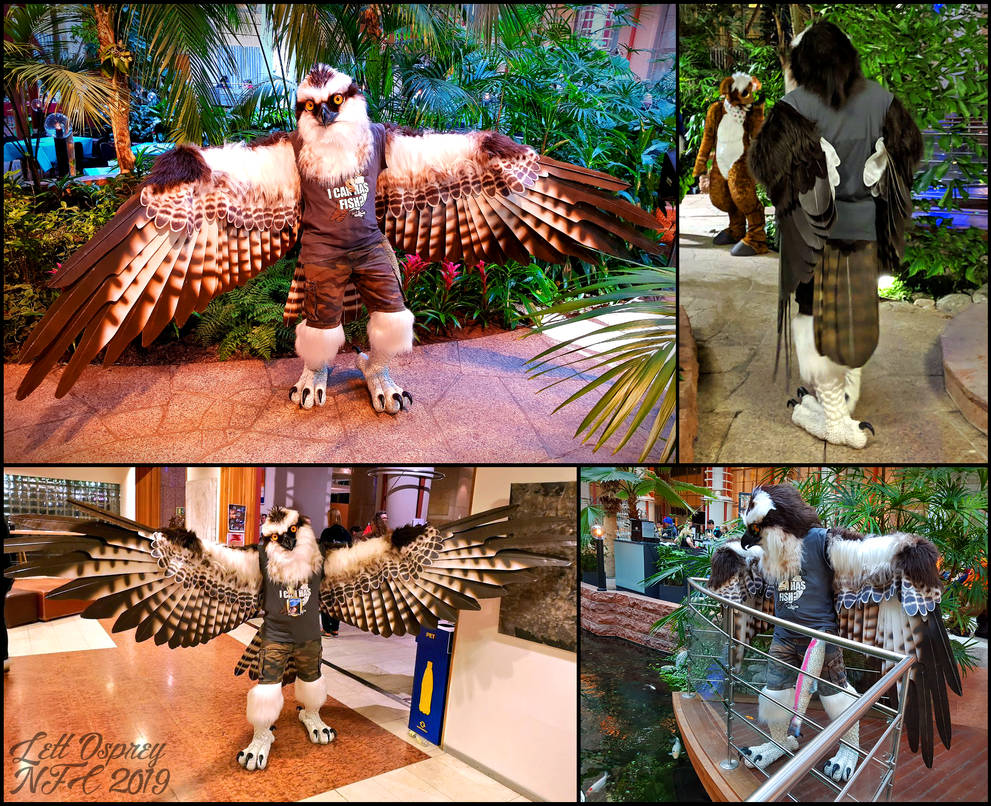 Lett Debuted at NFC (Part 2) by swandog