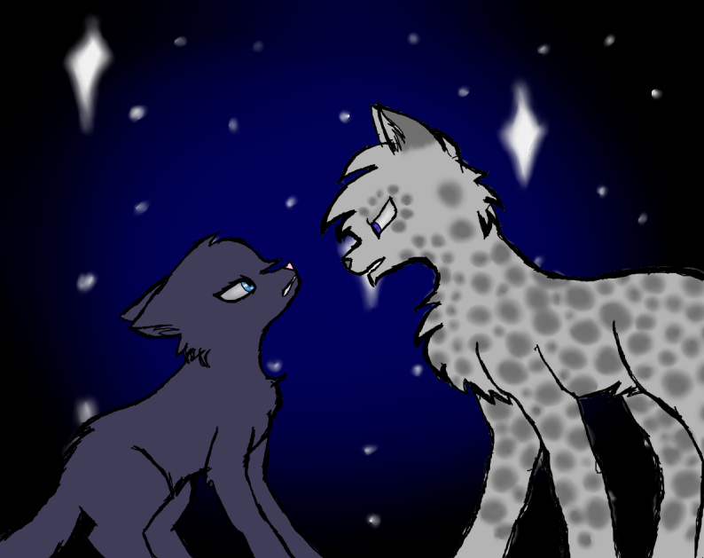 Can someone give me good warrior cat names? - WARRIOR CATS ...