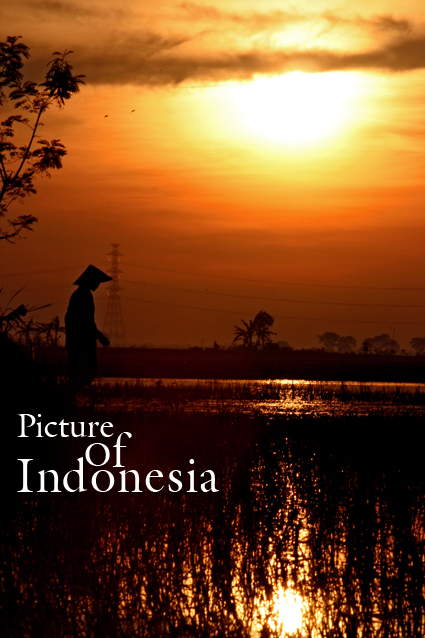Picture of Indonesia by PictureOfIndonesia