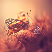 Untitled by Abdulazizmuseib