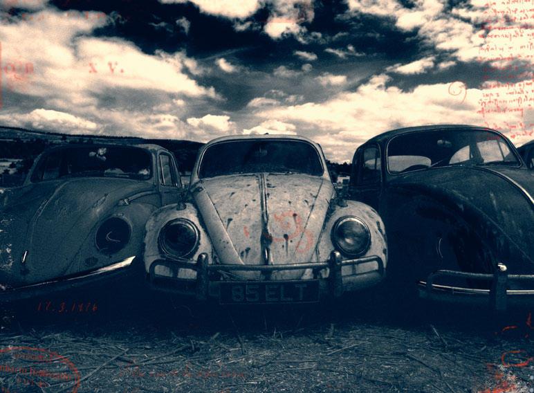 Beetle Graveyard by alfieuk