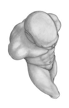 Figure   0003