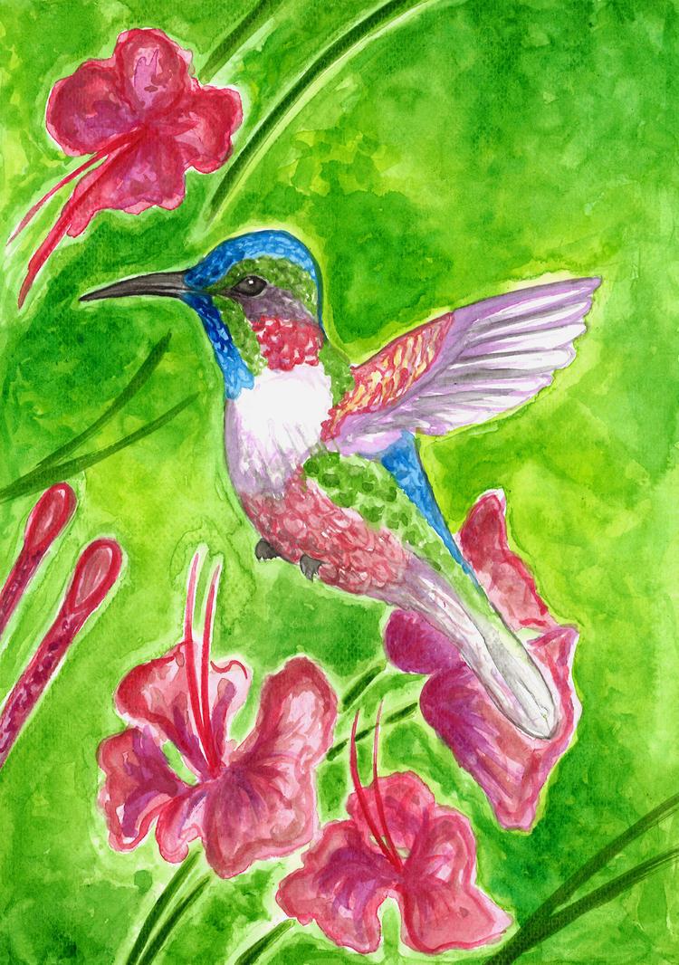 Hummingbird by Magizoom