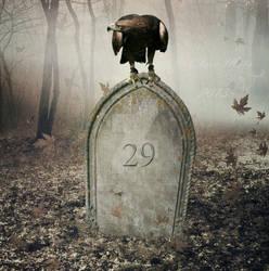 Eternal 29