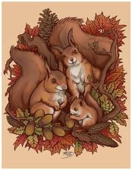 Tatoo ecureuil