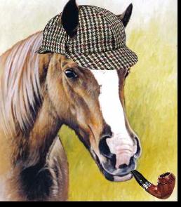 Sherclop Pones Portrait