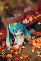 Autumn is coming~