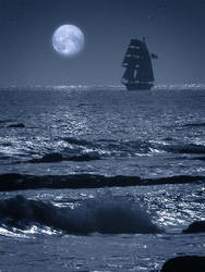 Moonlight Johnson