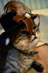 Steampunk Cat Nr. 2 (Vincent)