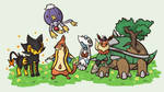 My Pokemon Platinum Team