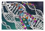 DNA (Biology 7 Unit Divider)