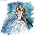 Guyver - Sho and Mizuki wedding by Lucithea