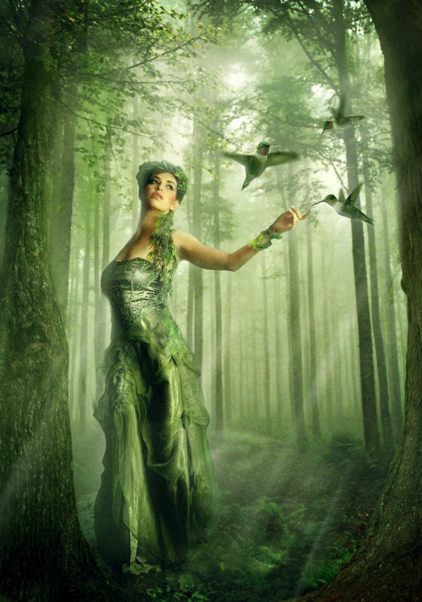 forest fairy wallpaper - photo #33