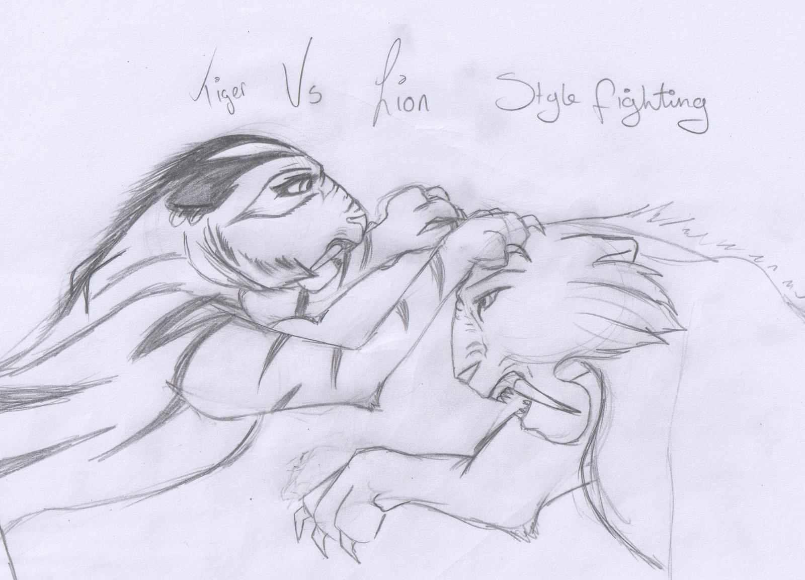 Lion Vs Tiger Drawing | www.imgkid.com - The Image Kid Has It!