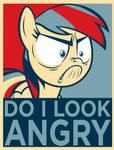 Do I Look Angry!?