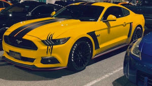 Ford Mustang - STREET RACING by x-Moonlight-Dreams-x