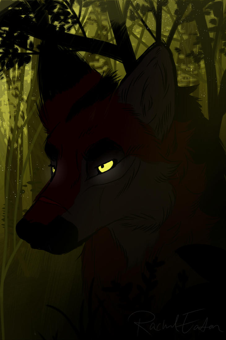 True Wolf by VvibrantcolorsS