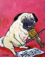 Pug playing the Violin by jSchmetz