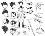 Robin - The Leader