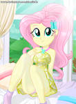 The Fluttershy's photo