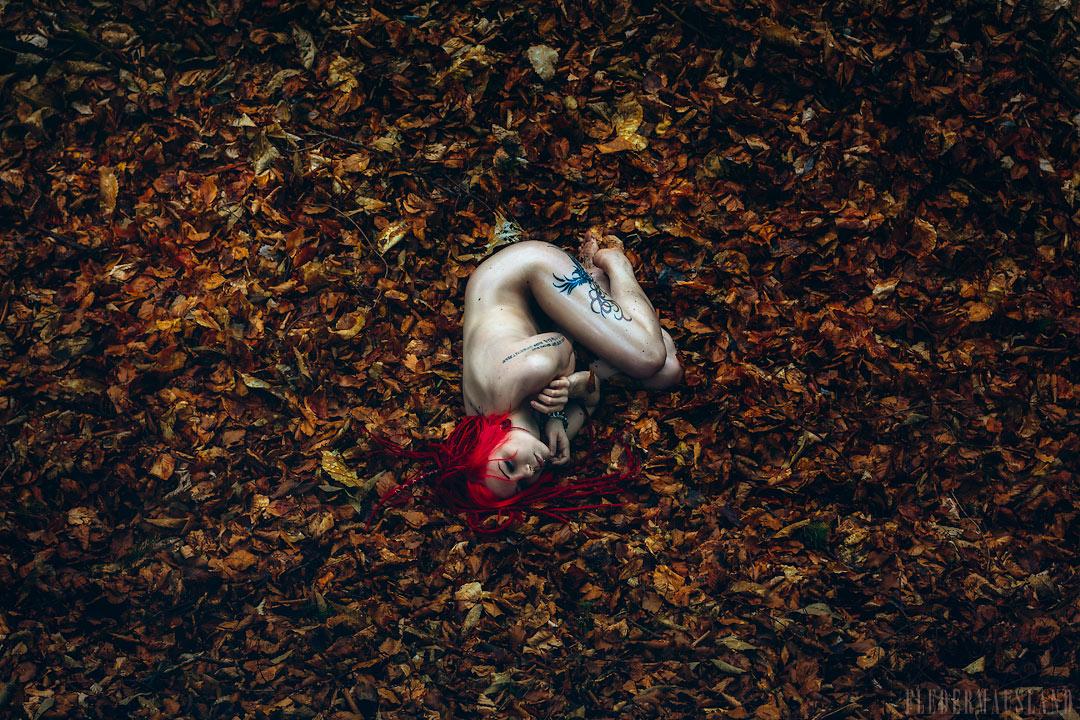Sweet Oblivion by Fledermausland