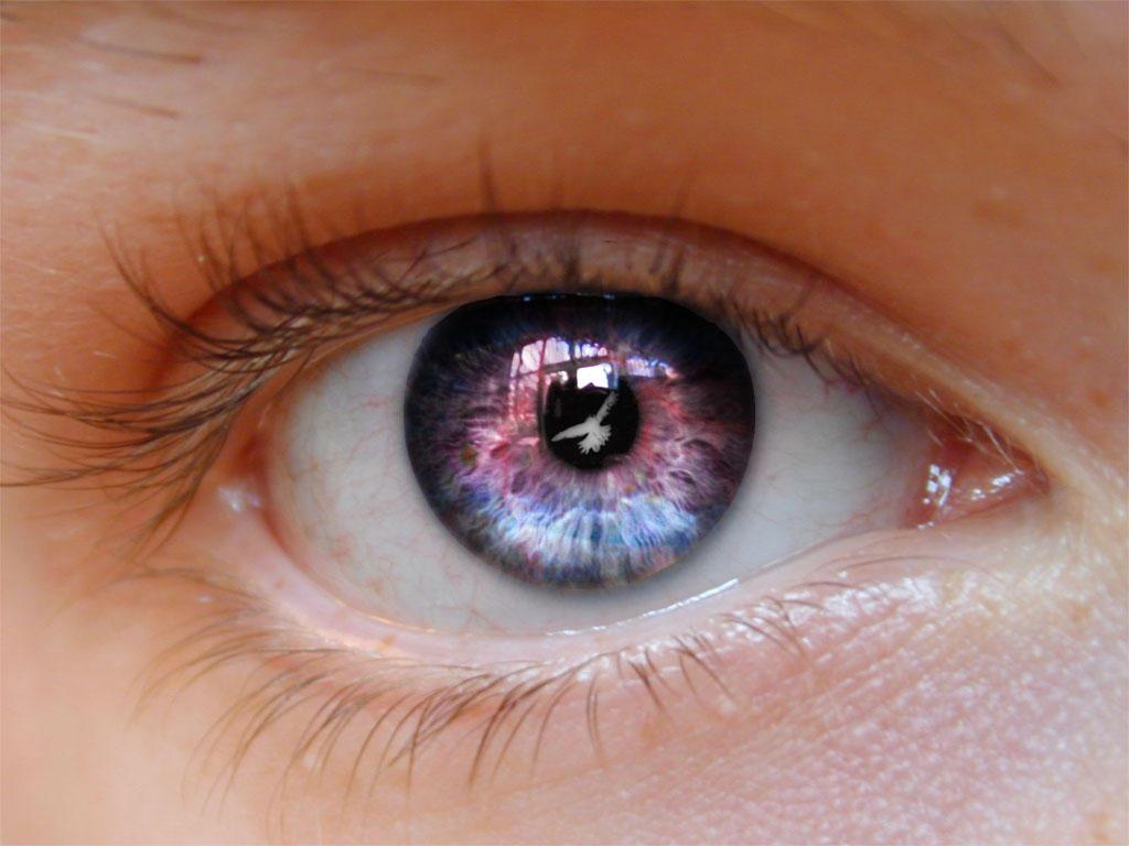 Eye by Qzma