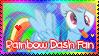 Rainbow Dash Fan