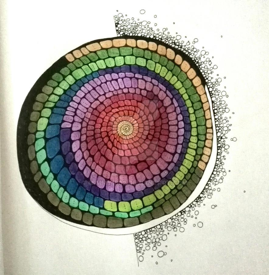 Spiral by mimmy1602