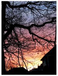 Beautiful sunset by talkovercoffee