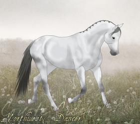Northwest Dancer by Huntress614
