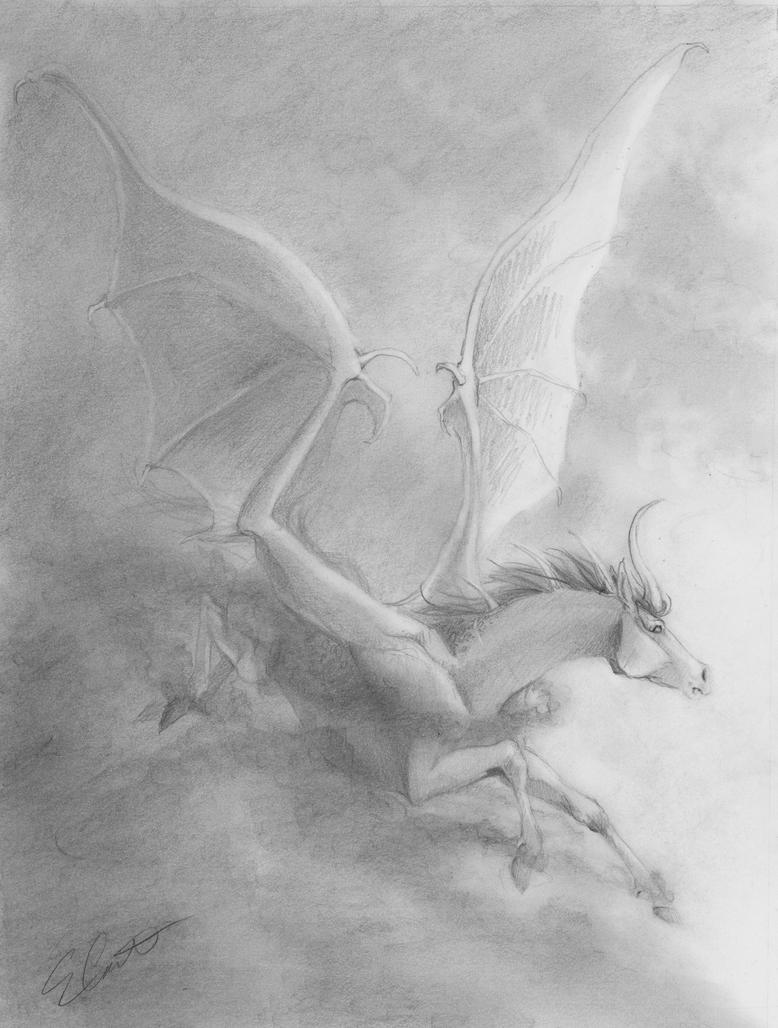 Tight Sketch:  Rikyr by brightredrose