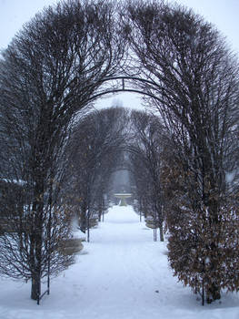 Snowy Day Stock -12