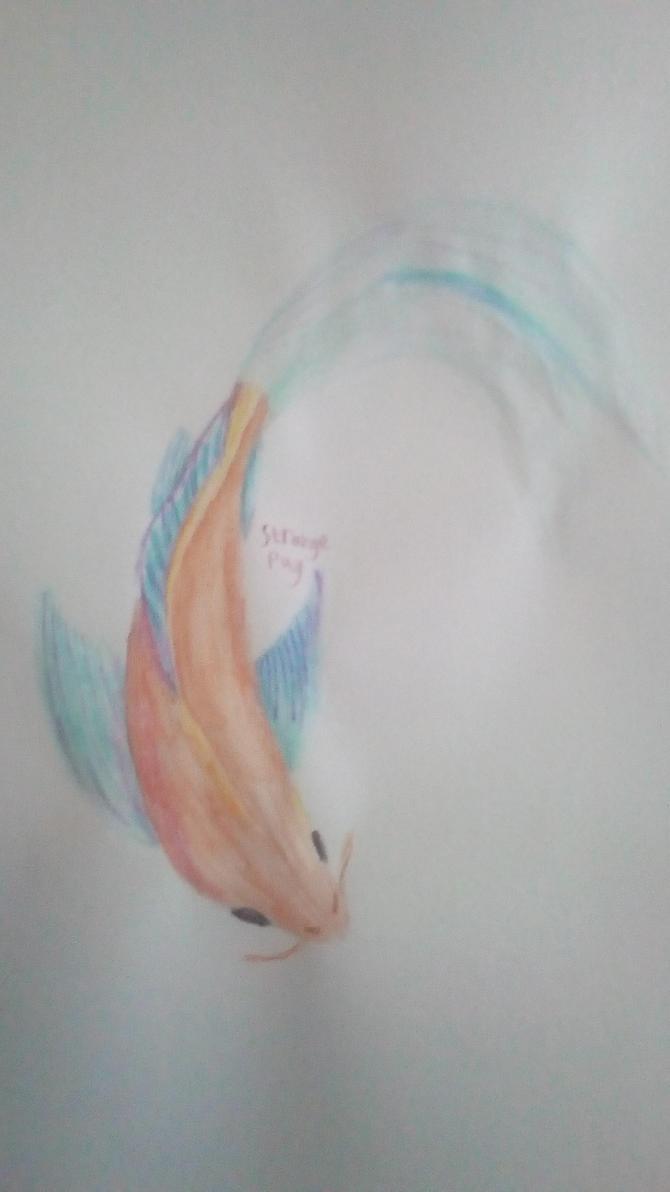 Koi fish by StrangePug