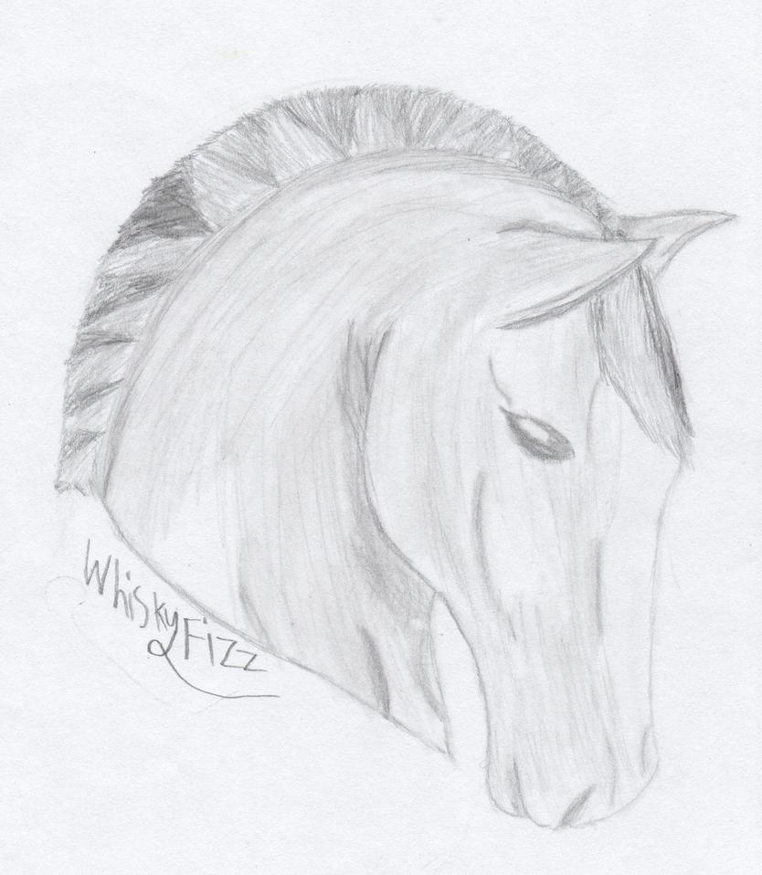 Horse Head by StrangePug