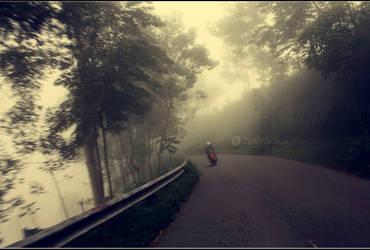 My Way by lovesignal