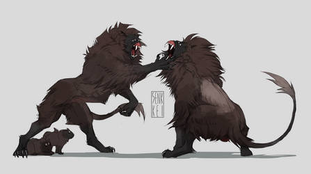 mama kaimen defends her pups