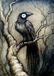 Black Bird X