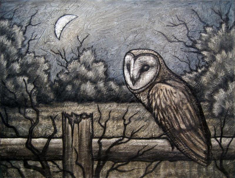 Barn Owl II by shmeeden