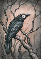 Black Bird Watercolour II by shmeeden