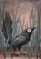 Black Bird Watercolour III by shmeeden