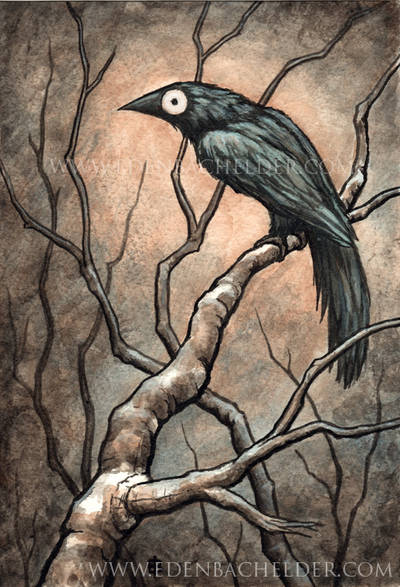 Black Bird Watercolour IV by shmeeden