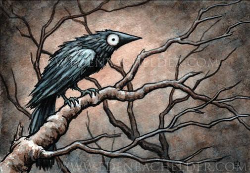 Black Bird Watercolour VI