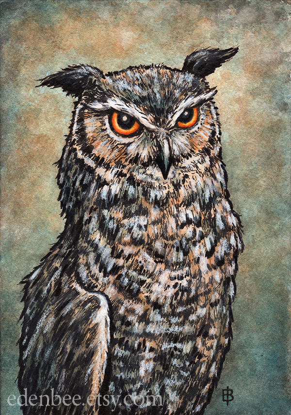 Owl Portrait watercolour and mixed media by shmeeden
