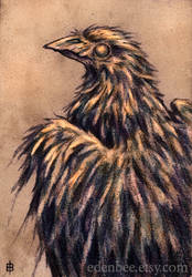 Sepia Raven pencil drawing by shmeeden